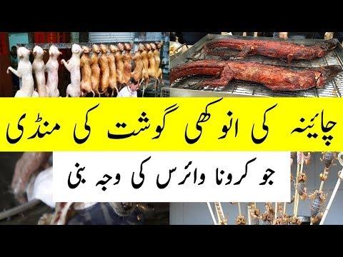 China Dog Meat Market wih Crocodiles URDU/HINDI