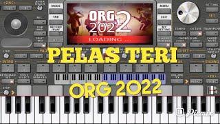PELAS TERI ORG 2022.TES ORG 2022. screenshot 4