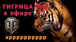 🐆 Тигрица в Эфире 🐆