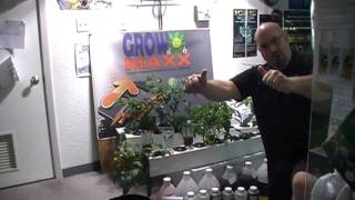 How to mix Cutting Edge Solutions nutrient. Multiple bottles are no problem!