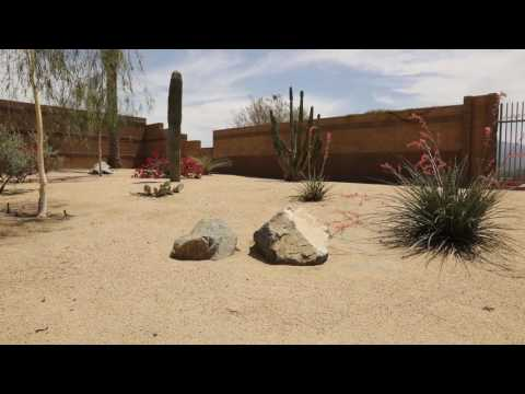 Summer Landscaping Tips - Irrigation