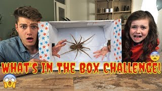 WHATS IN THE BOX CHALLENGE MET NANNE - SMERIGSTE EVER!