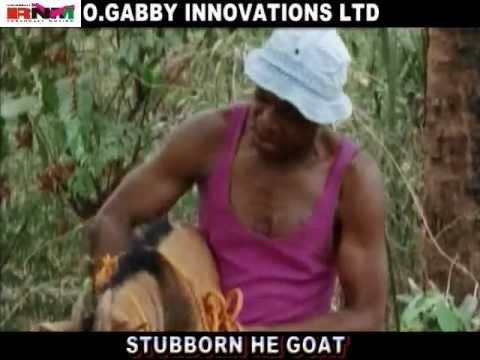 Trailer! Stubborn he goat