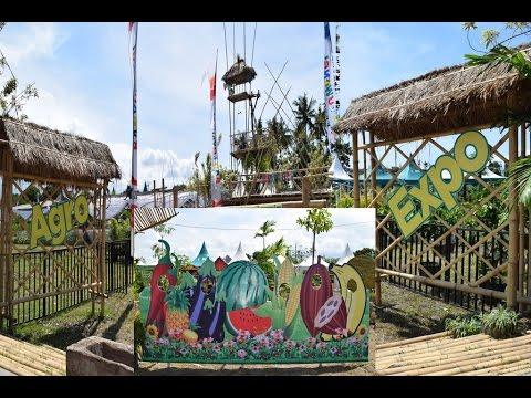 persiapan-festival-agro-expo-banyuwangi-2017-padukan-unsur-wisata,-edukasi,-&-teknologi-pertanian