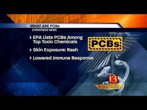What Are PCBs?