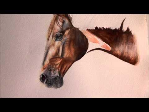 Portrait malen lassen – Aquarell Pferd von Jana Noreen Germer