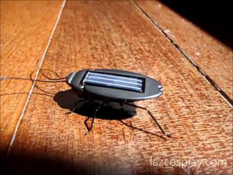 Solar Power Energy Black Cockroach Bug Toy Children [lazcosplay.com] Feedback