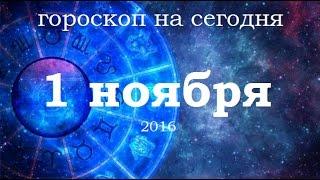 Поиск гороскоп на сегодня