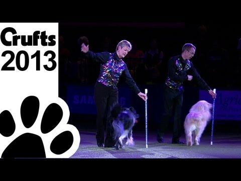 Mary Ray - Heelwork to Music - Crufts 2013