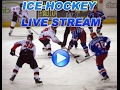 live hockey 2016 Leksands vs Linkopings SWEDEN: SHL