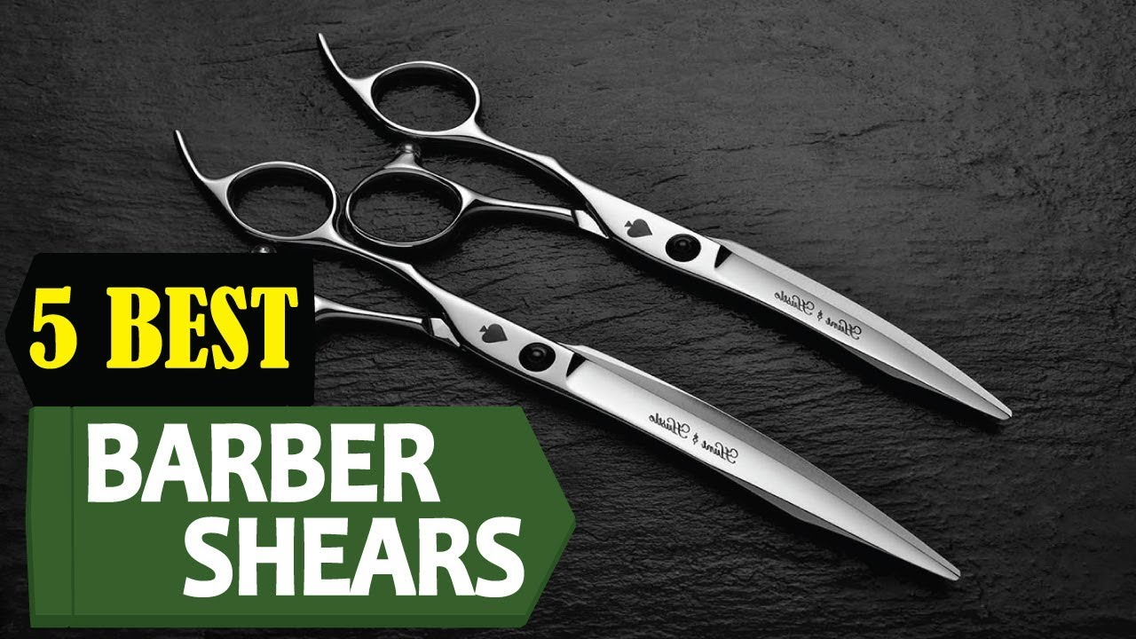 11 Best Barber Shears 11  Best Barber Shear Reviews  Top 11 Barber Shear   Review Lifetime