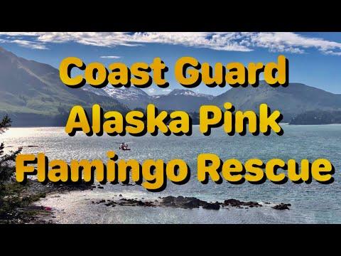 Coast-Guard-Alaska-Pink-Flamingo-Rescue