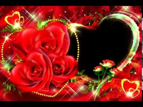 картинки скачать розы