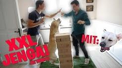 Tourette spielt XXL Jenga und rastet mit Tims Hund aus! (mal wieder)