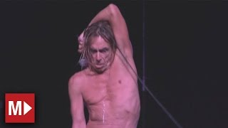 Iggy and the Stooges - No Fun | Live in Sydney
