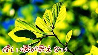 優しい歌が歌えない 歌詞付 noriyuki makihara,with Lyric