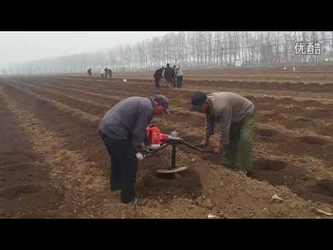 Portable Small Earth Auger Tree Planting Hole Digger Price
