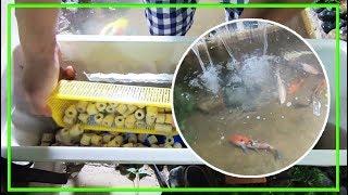 Cách Lắp Máy Lọc Nước Cho Hồ Cá Koi hoàn chỉnh #3