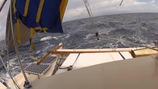 wharram tiki 38 sailing
