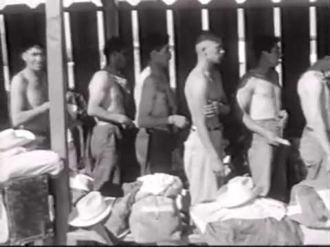 Bracero Workers in California, 1960