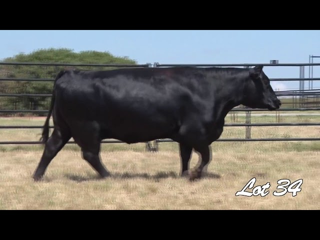 Pollard Farms Lot 34