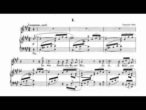 Im wunderschönen Monat Mai - Piano Karaoke - Dichterliebe
