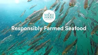 Responsibly Farmed Seafood l Whole Foods Market