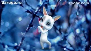 Первый день весны! Прикольные короткие видео поздравления с первым днем весны!