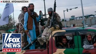 'The Five' react to 'startling' new reports about the Taliban
