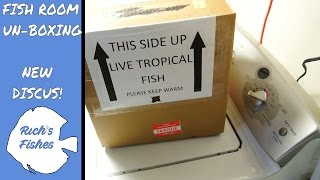 fish unboxing!🐠Got a new order in from Carolina Discus🐟 fish room unboxing