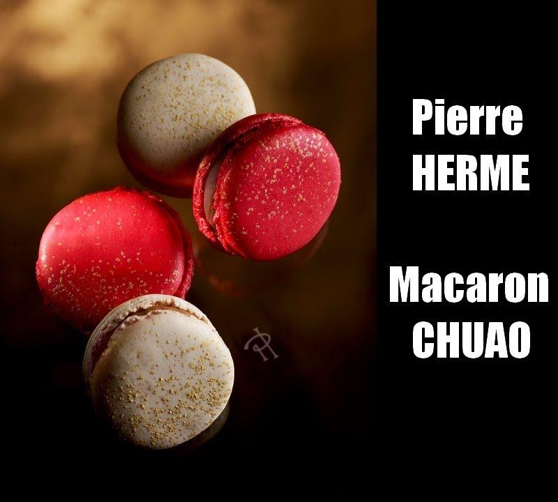 Macarons pierre book herme