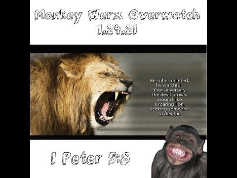 Monkey Werx Overwatch SITREP 1 24 21