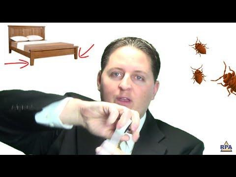 Tips to Get Rid of Bed Bugs Tonight - Видео онлайн