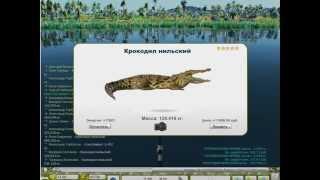 Трофейная Рыбалка(Ловим на донку...!, 2015-10-11T21:16:35.000Z)