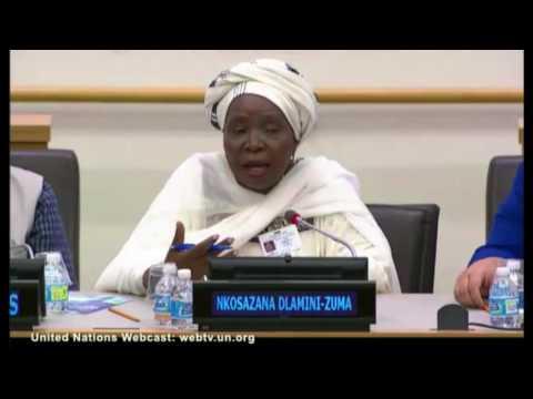 Dr Nkosazana Dlamini Zuma,  Launch Report on UN Commission on Health Employment and Economic Health