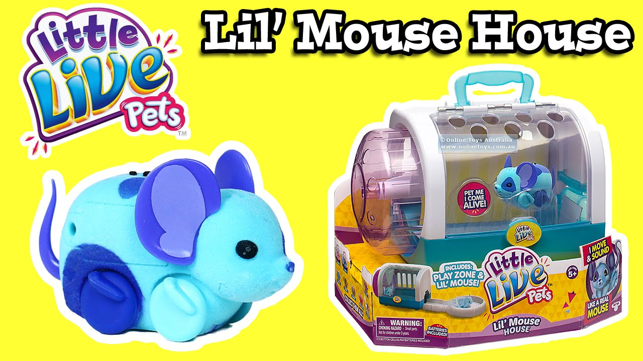 Little Live Pets Lil Mouse House Youtube