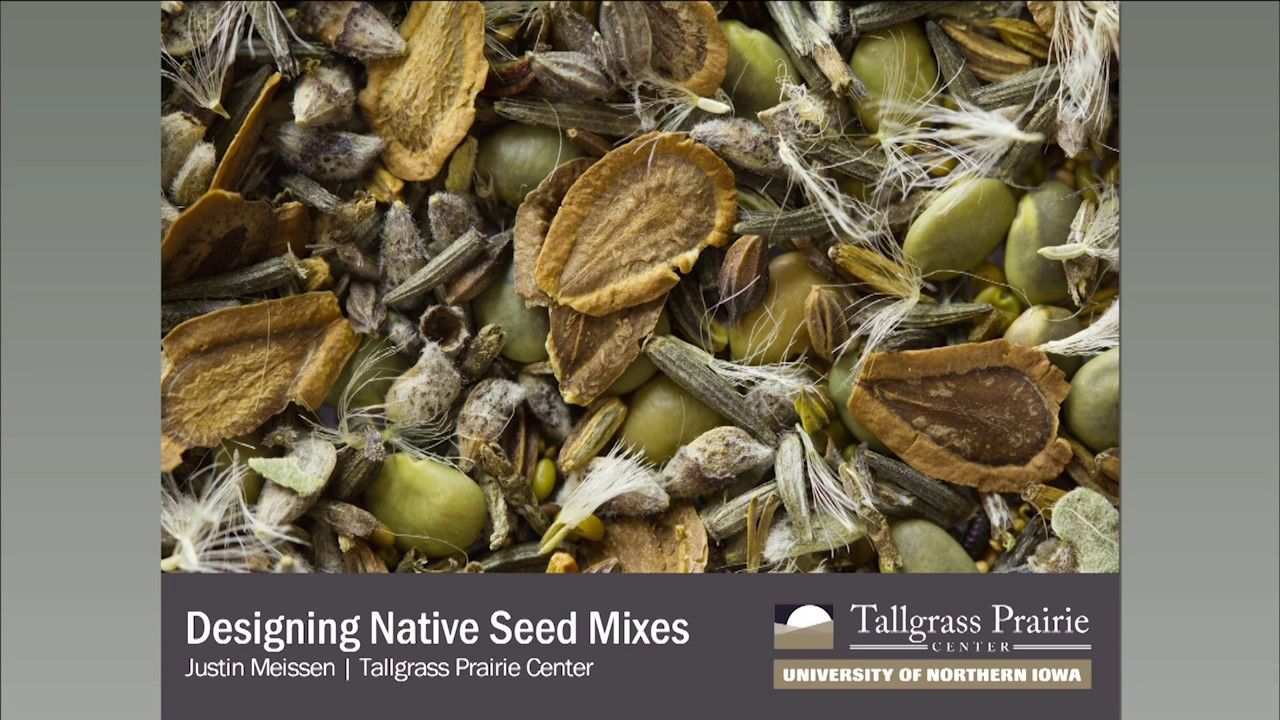 Designing Seed Mixes for Native Habitat - YouTube