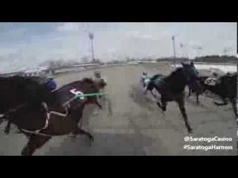 Starting Gate | Saratoga Casino and Raceway