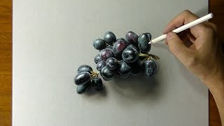 Drawing of black grapes - How to draw 3D art