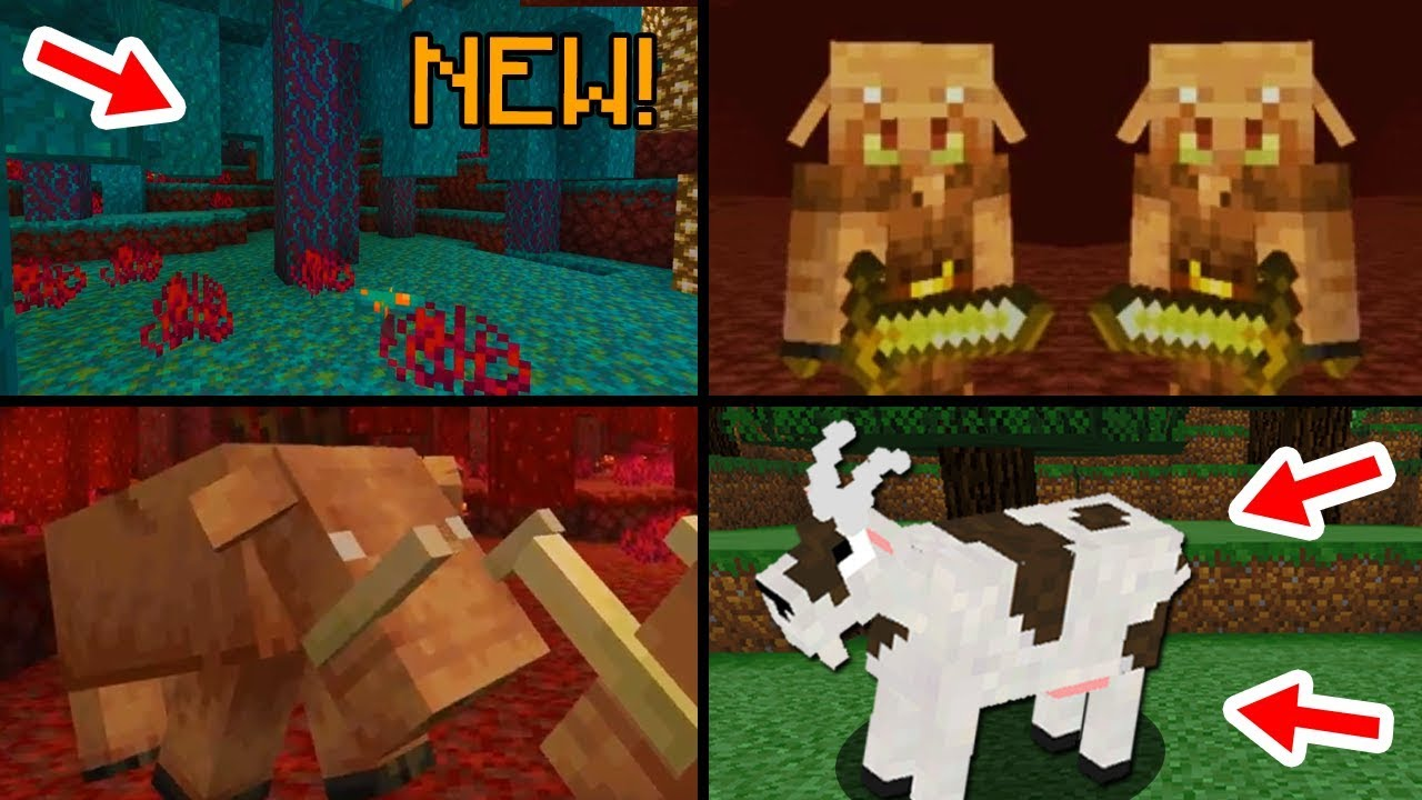 ✔ Minecraft 9.96 Update: 95 Features That Will Be Added
