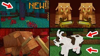 ✔ Minecraft 1.16 Update: 15 Features That Will Be Added