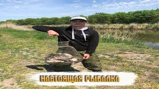 Рыбалка на карася в мае Река Аксай Полный садок
