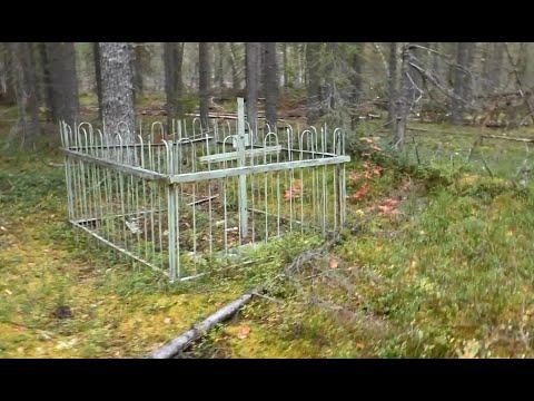 Еду за лесом Вишерский Гулаг Чья могила в лесу?