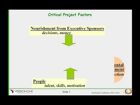 The Role of the Project Manager in Modern Agile Project