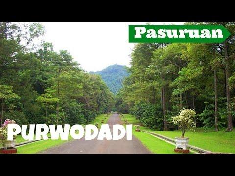 Visit Purwodadi Botanical Garden, Pasuruan - East Java