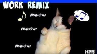 WORK AAP Ferg Cat Twerk Remix