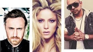 Sean Paul David Guetta Mad Love Ft. Shakira.mp3