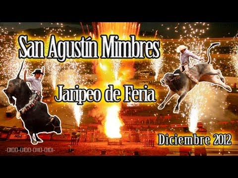 Jaripeo de Feria - San Agustín Mimbres - Diciembre 2012