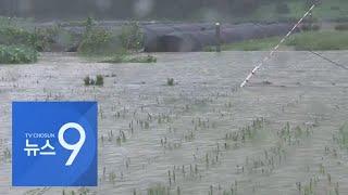 태풍 상륙 중국 상하이 일대, 하루 500㎜ 폭우에 피해 속출 [뉴스 9]