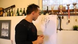 PoMocny - Plecy, największa górna grupa mięśni